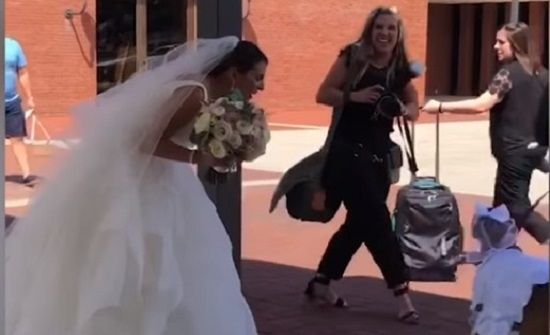 بالفيديو: كلبة تسرق الأضواء في زفاف صاحبتها.. هذا ما ارتدته!