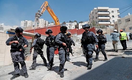 الاحتلال يصادر حمارا بالقدس بزعم استخدامه بأعمال للمقاومة