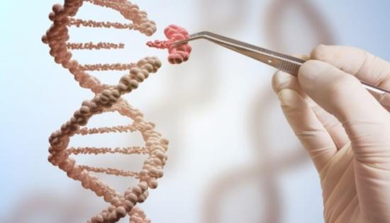 علماء: علاقة وثيقة بين نمط الحياة والإصابة بالسرطان