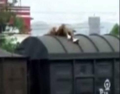 بالفيديو: صعد على القطار لالتقاط صورة.. فصعقته الكهرباء!