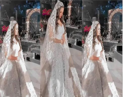 هنادي مهنا بفستان الزفاف في أول فيديو من حفل زفافها.. وتامر حسني وحسن شاكوش بصورة تذكارية
