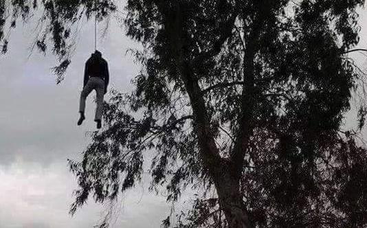 """العثور على جثة """"ثلاثيني""""مشنوق على شجرة في سحاب"""