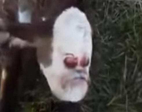 بالفيديو.. مشاهد صادمة لولادة بقرة برأس إنسان