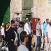 المسمار الصهيوني في حائط فلسطين