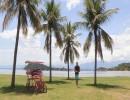 جزيرة باكيتا