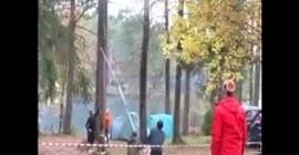 بالفيديو.. لحظة سقوط شجرة عملاقة على رجل