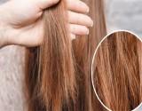 في 7 أيام .. وصفة لـ علاج الشعر التالف