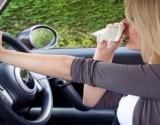 مصاب بحساسية الأنف؟ استشارة الطبيب واجبة قبل قيادة السيارة