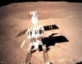 """بذرة صغيرة """"صينية"""" على القمر.. شجرة عملاقة في المستقبل"""
