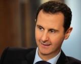 شلبي تحتفي بصورتها مع الأسد وشاهين تكشف ما قاله (شاهد)