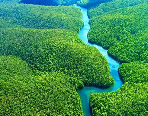 ما هو مصير كوكب الأرض في حال إختفاء غابات الأمازون؟