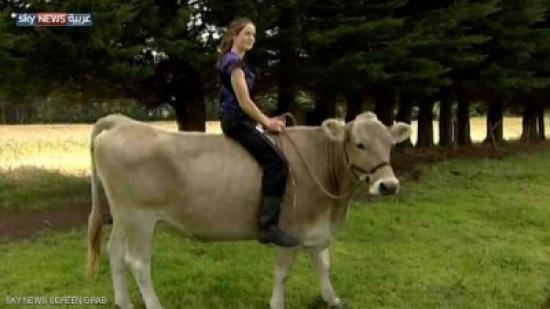 فيديو: شاهد كيف حولت فتاة بقرة إلى حصان أصيل ؟