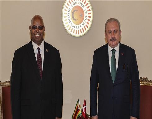 شنطوب: أفريقيا أهم مرتكزات السياسة الخارجية التركية