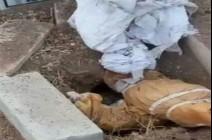 """المدعي العام يأمر بإعادة دفن """" طفلين """" في الرمثا"""