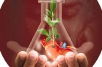 الأردن : 1691 عملية زراعة أعضاء من 2011