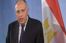 وزير الخارجية المصري: لا حلول عسكرية لأزمتي سوريا وليبيا