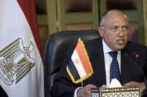 مصر تنفي نيتها الانخراط في الصراع السوري