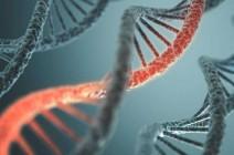 اختراق علمي قد يكون مفتاح علاج الأمراض الخطيرة
