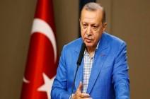 هكذا ربط أردوغان بين مظاهرات تقسيم واحتجاجات باريس