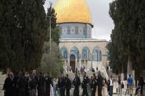 مئات المستوطنين يبدأون اقتحاما واسعا للمسجد الأقصى