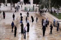 مئات الفلسطينيين يجهزون المسجد الأقصى وساحاته لاستقبال رمضان