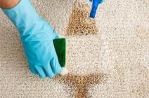 في دقيقتين.. 4 مكونات في مطبخك لـ تنظيف السجاد