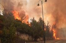 """لبنان يستعين بطائرات """"دول الجوار"""" لإخماد الحرائق المستعرة"""