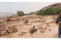 ارتفاع عدد وفيات سيول البحر الميت