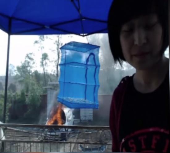 بالفيديو.. سيدة تشعل النار في سيارتها لجذب المشاهدين على الإنترنت