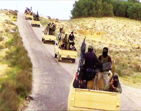 مقتل ستة أشخاص اثر اشتباكات قبلية مع تنظيم الدولة في سيناء المصرية