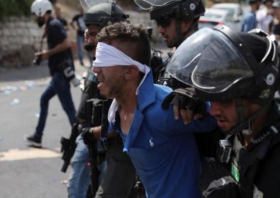 الاحتلال يعتقل 431 فلسطينيا في شهر