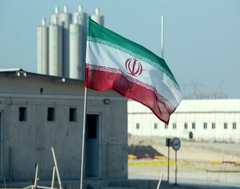 إيران.. هزتان أرضيتان قرب مفاعل بوشهر النووي