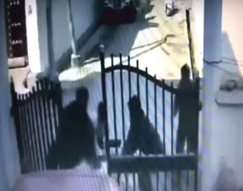 بالفيديو... شجاعة سيدة تنقذ زوجها من الموت على يد عصابة