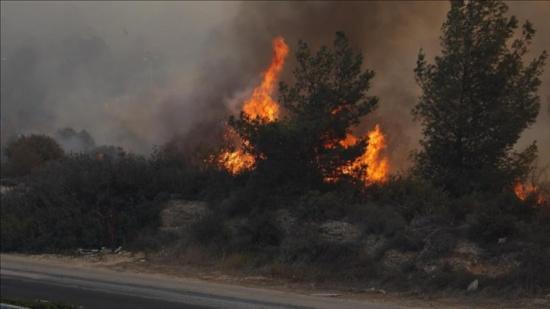 تجدد اندلاع الحرائق في اسرائيل