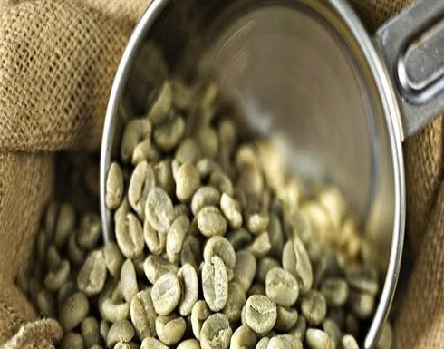 القهوة الخصراء.. سلاحك الفعال لخسارة الوزن!