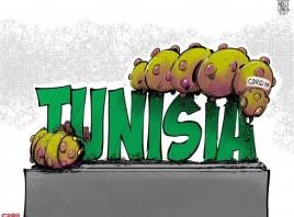 لعنة الكوفيد غطت على تونس اخضرارها