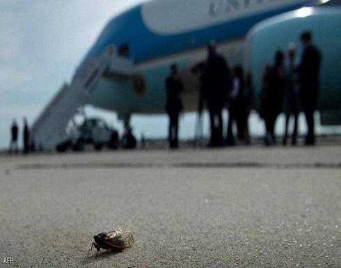 فيديو لحشرات تزعج بايدن.. وتعطل طائرة الصحفيين المرافقين له