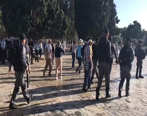 بالفيديو : اعتقال مصلين بالأقصى تزامنا مع اقتحام المستوطنين