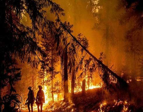 شاهد : قتيل و27 جريحًا جراء حريق غابات قرب الريفيرا في فرنسا