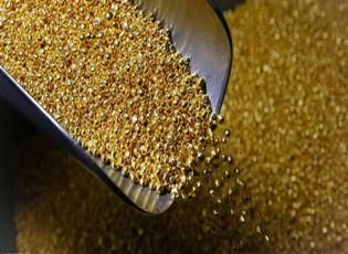 الذهب يهبط من أعلى مستوى في 10 أشهر