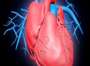 ممارسة الأعمال المنزلية تساعد فى شفاء مرضى الأزمات القلبية