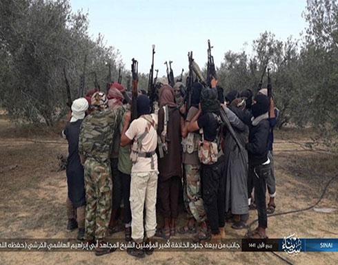 """""""ولاية سيناء"""" يبايع زعيم تنظيم الدولة الجديد"""