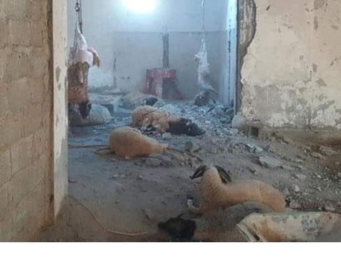 صور : اضاحي  العيد آخر ضحايا حفتر في قصفه على طرابلس