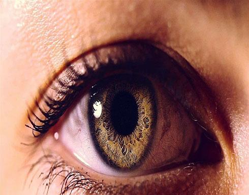 أطعمة مهمة لصحّة العين.. تعرّف إليها!