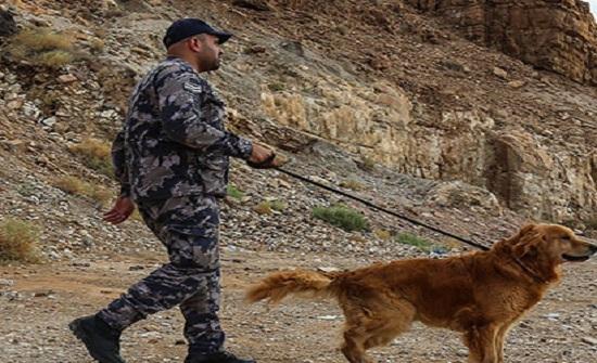 استمرار عمليات البحث عن مفقودين في البحر الميت
