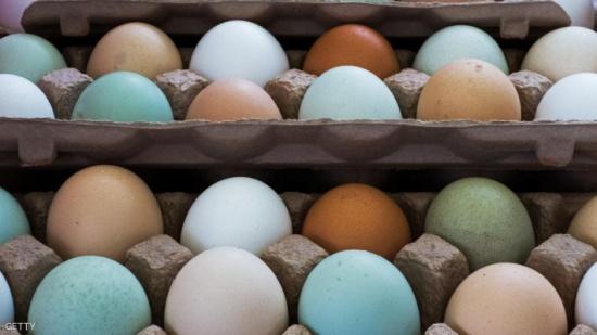 ثلاثة ملايين بيضة بطريقها إلى كوريا الجنوبية