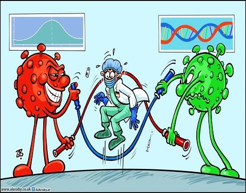 فيروسات كورونا