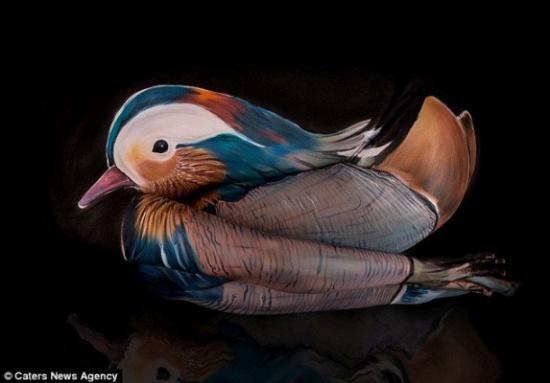 بالفيديو.. فنانة ألمانية تحول الأجساد البشرية إلى حيوانات!