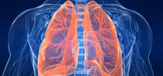 ٩ أشياء فى منزلك تضر صحة الرئتين