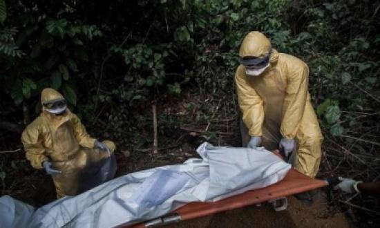 """""""الحمى النزفية الفيروسية"""" مرض قاتل ينتشر بسرعة في أفريقيا"""
